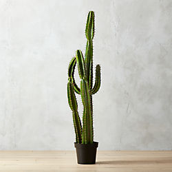 "potted 60"" faux cactus"