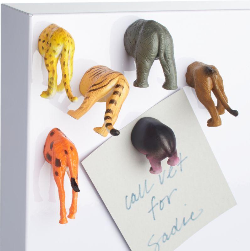 set of 6 safari magnets