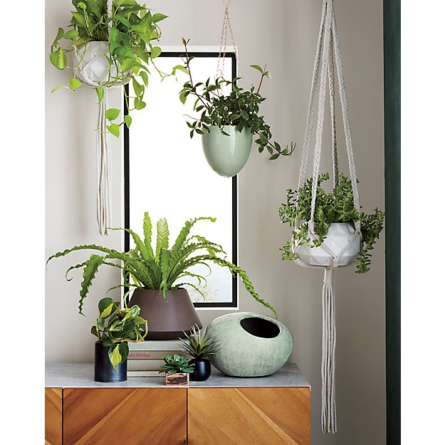 Home Decor Websites In Usa: Macramé Plant Holder
